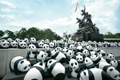 WWF 1600 Pandas